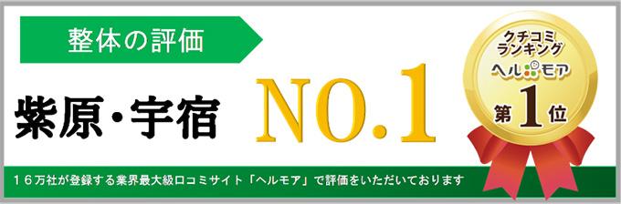 ヘルモア口コミランキング 柴原・宇宿NO.1